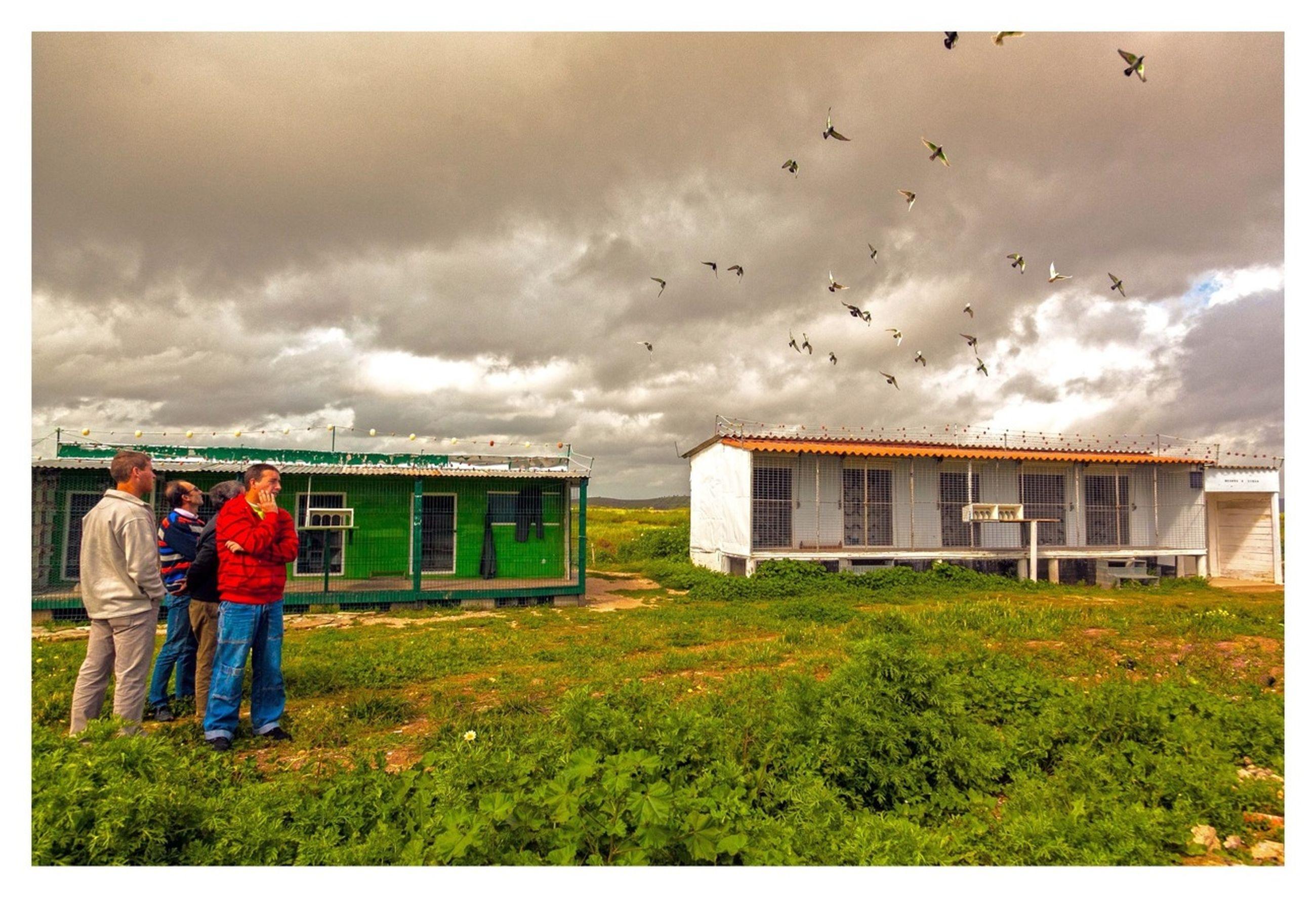 transfer print, sky, auto post production filter, field, cloud - sky, building exterior, grass, built structure, architecture, cloudy, men, cloud, landscape, rural scene, lifestyles, agriculture, farm, day