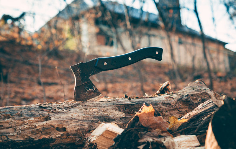 Close-up of hatchet and log on tree stump in forest