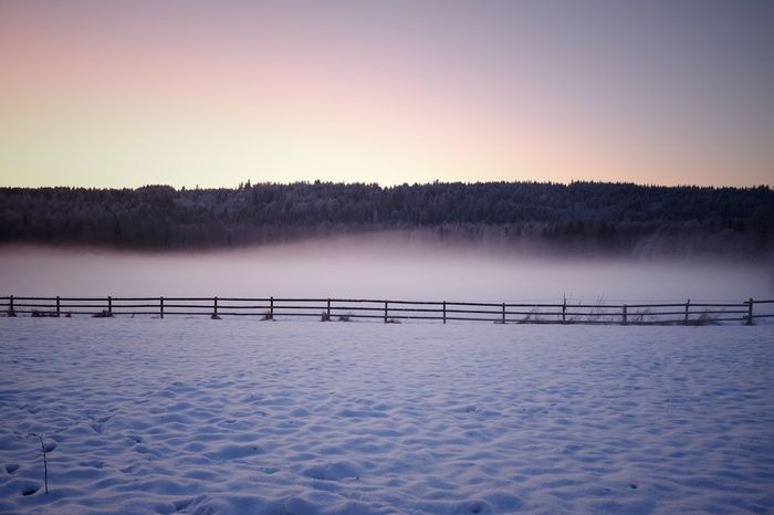 Snow fence. Omberg, Sweden Glow Mist Emptiness Lines Winter Cold Temperature Snow Tranquility Weather Lake Nature Frozen Beauty In Nature Tranquil Scene Scenics No People Outdoors Landscape Ice Tree Sunset Clear Sky