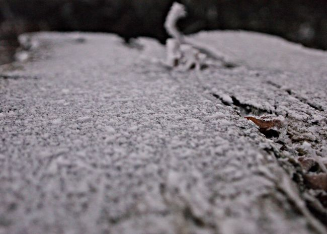 Beauty In Nature Close-up Cold Temperature Day Ice Nature No People Outdoors Selective Focus Snow Surface Level Textured  Winter Wooden Desk