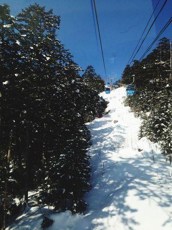 Japan Snow Day