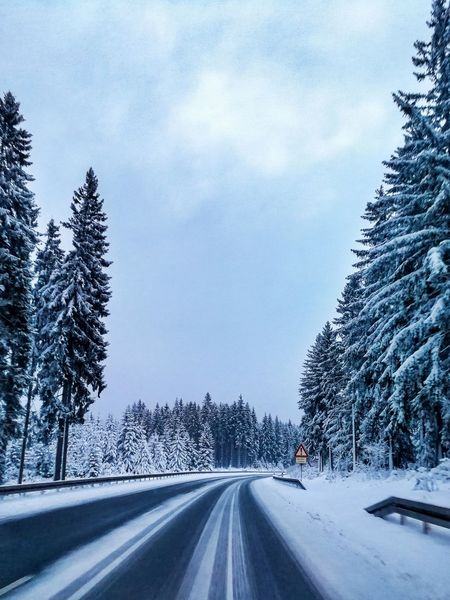 Forest Scenic Season  Cold Wood Snowy Landscape Ice Germany Road Weather Fog Frost Frozen Countryside Scene Dawn Horizon Road Car The Way Forward Tree Sky No People Car Point Of View Day Nature Outdoors Snow Winter EyeEmNewHere Shades Of Winter