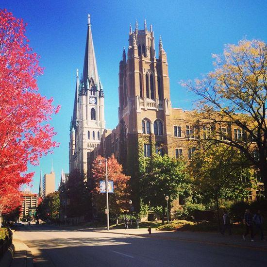 I have a pretty beautiful campus. 😌💙💛 @marquetteu Gesù  Marquettehall Marquette