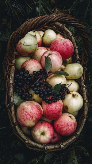 High angle view of apples in basket