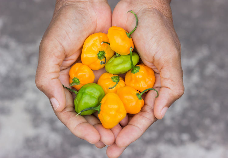 Cropped Hands Holding Peppers