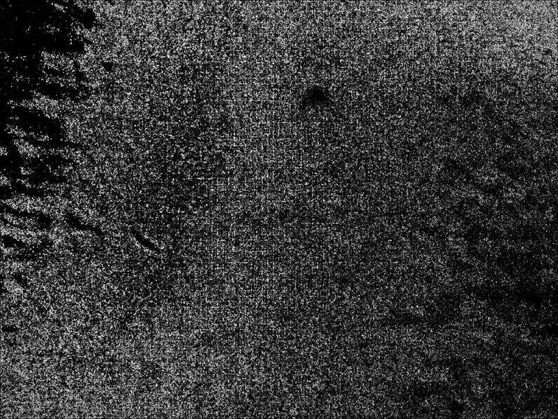 Textured  Backgrounds Shades Of Gray Blackandwhite Grey Gray Gravelly Full Frame Shades Of Grey Shades Of Black Black White Grey Texture Gradient Grainy ArchiTexture Gradient Background Grainy Texture B&w Textured Surface Guess What This Is Unknown Random Accidental Art Accidentography Monochrome Photography
