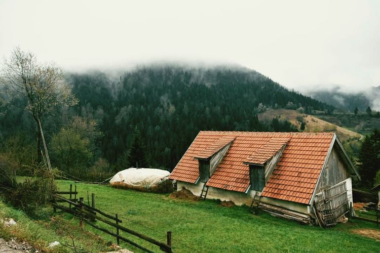 Beautiful view from our cottage window even on a Cloudyday Landscape Mountain Trees House First Eyeem Photo