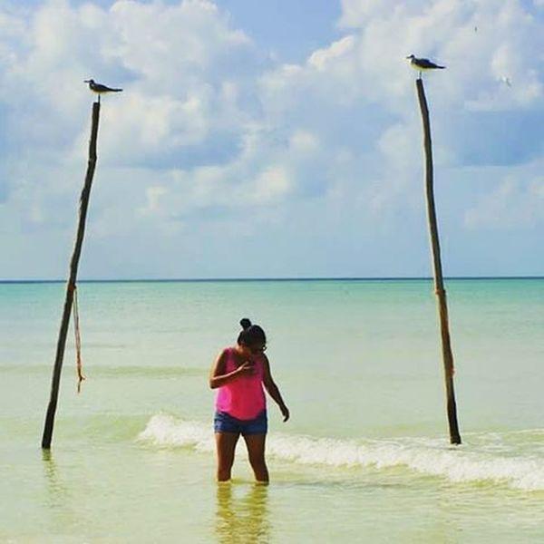 I ❤ biologist... Biologist Islandlife Holboxisland Sea Happydays Sunny Holbox Photographyislifee Nikonphotography