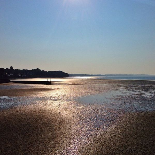 Golden #sunset at #Ryde beach ☀️???☀️ #IsleOfWight #aauk #allshots_ #sea #britishsummer #capture_today #englishchannel #gi_uk #gf_uk #gang_family #ig_england #o2travel #summer #YourTurnBritain #royalisland Capture_today Yourturnbritain Summer Englishchannel Sea Isleofwight Sunset Royalisland Gang_family Britishsummer Ryde Allshots_ Gf_uk O2travel Gi_uk Ig_england Aauk