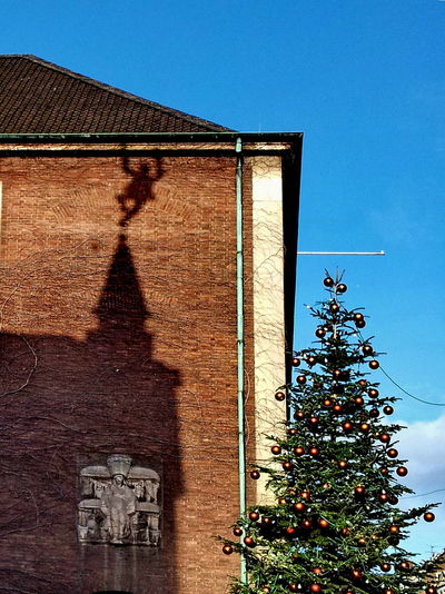 Brick Wall EyeEmNewHere Precarious Building Exterior Christmas Christmas Tree Dangerous Dangling Day Low Angle View No People Outdoors Precariously Rain Gutter Shadow Cast Sky Tree The Week On EyeEm The Street Photographer - 2018 EyeEm Awards #urbanana: The Urban Playground