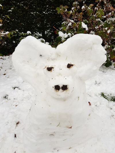 snow creature Snow Creation Animal Phantasie Never Grow Up Creativity Winter Playtime Outdoor Fun Chilling Season  Bizzy Day Today :) No People Outdoors Day Nature Mammal Animal Themes Close-up