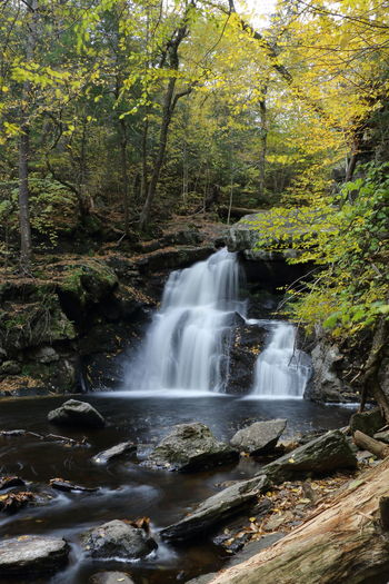 Fall Beauty Fall Autumn Mood Tree Forest Motion Scenics - Nature Long Exposure Waterfall Rock Flowing Water Water Environment Blurred Motion Outdoors No People Power In Nature Beauty In Nature Nature Flowing Enders Waterfalls Connecticut Tranquility