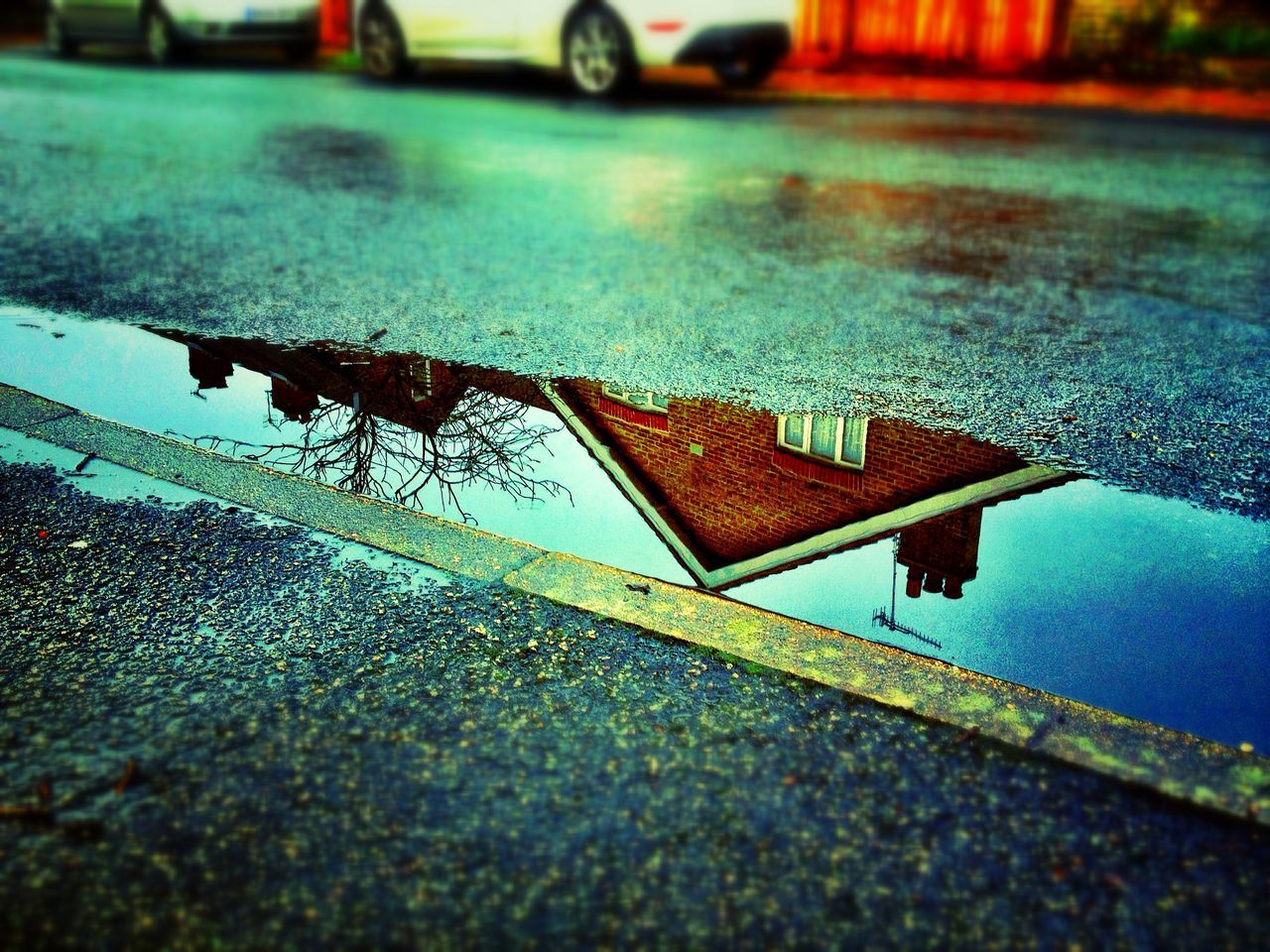 Reflection of built structure and tree in puddle