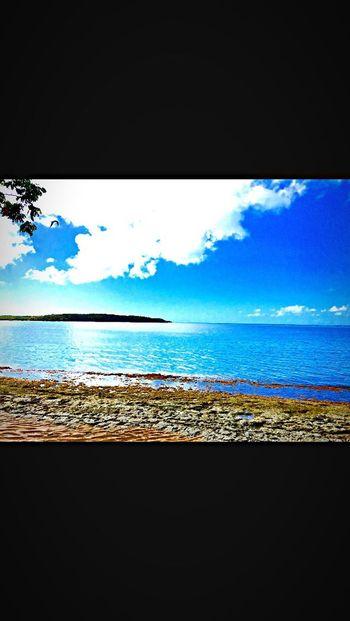 Seascape Water Beach Scenics Nature