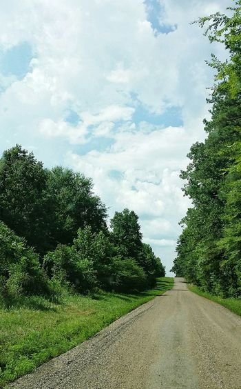 country road Gravel Dirt Road Cloudy Day Sky Cloud - Sky Empty Road Treelined Country Road Pathway vanishing point The Way Forward Countryside Diminishing Perspective Tranquil Scene Long