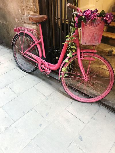 Bicycle in basket on footpath