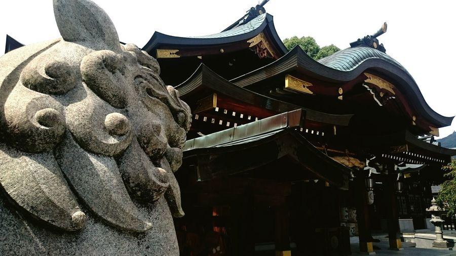 Shinto Shrine Japan Shrine Hall Of Worship Komainu