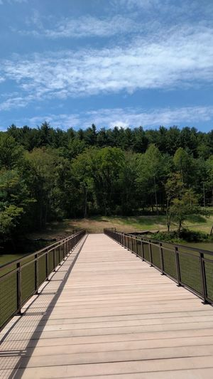 The new walk bridge across the bay at Atwood Lake, Ohio, USA. The Way Forward Tranquil Scene Railing Growth Sky Blue Boardwalk Day Nature Cloud Outdoors Beauty In Nature Narrow Long Calm Water Lake AtwoodLake