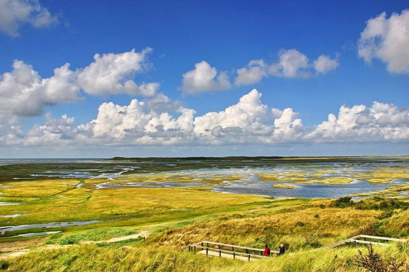 Texel  De Slufter Naturschutzgebiet Landscape Sea Outdoors Blue Water Cloud - Sky Beach Travel Destinations Horizon Over Water Grass Sky