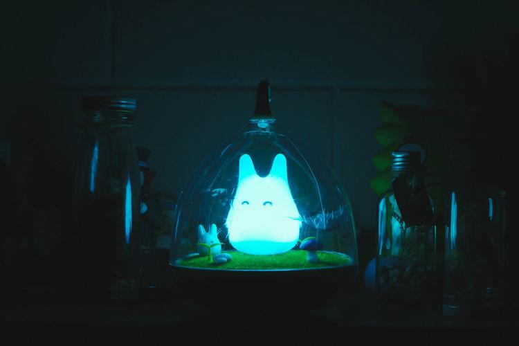Totoro. Anime