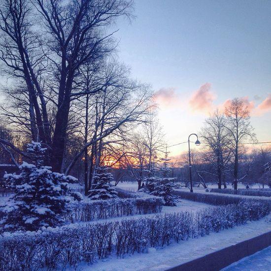 Русская зима в парке победы паркпобеды СПб . Spb Spb_live Winter Wintertime