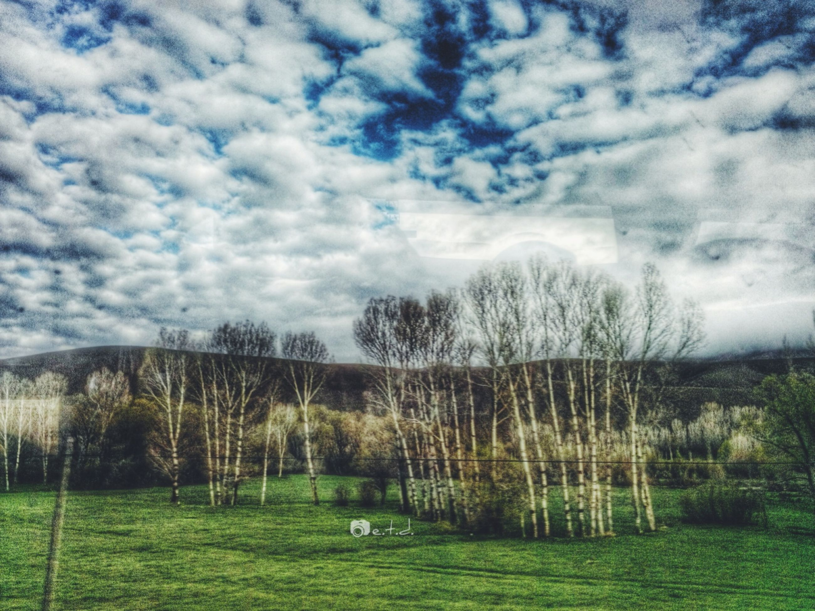 grass, sky, landscape, cloud - sky, field, tranquil scene, tranquility, tree, scenics, grassy, beauty in nature, cloudy, nature, green color, cloud, growth, rural scene, non-urban scene, day, idyllic
