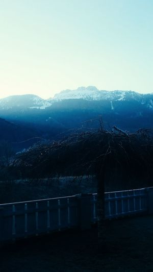 Kampenwand im Winter Moody Sky Aschau Early Morning Sonnenaufgang Morning Kampenwand Winter Berg Chiemgau Chiemsee Alpen Alps Landscape Tranquility Water Tree Blue Mountain Sky Cold Temperature Foggy Snow Covered Tranquil Scene Snowcapped Mountain Silhouette Idyllic Frozen Cold Snow Weather