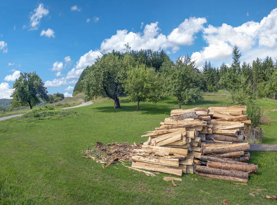Processed firewood on a meadow in rural landscape with blue and white sky Grass Nature Rural Stack Tree Wood Woodpile Countryside Firewood Freshly Healthy Eating Landscape Many Meadow Orchard Outdoor Outdoors Piece Of Wood Pile Processed Recently Scenery Sky Summer Wood Pile