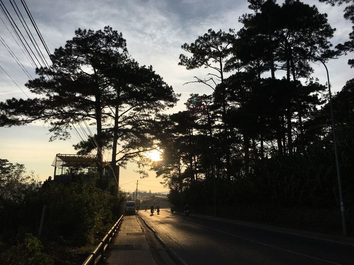 Photo By Me Click Click 📷📷📷 Photographer Photography Tree Sky Outdoors Road Nature Beauty In Nature Like Like Cold Dalat City Travel Sunshine ☀ Roadside Ngcuong EyeEmNewHere Second Acts