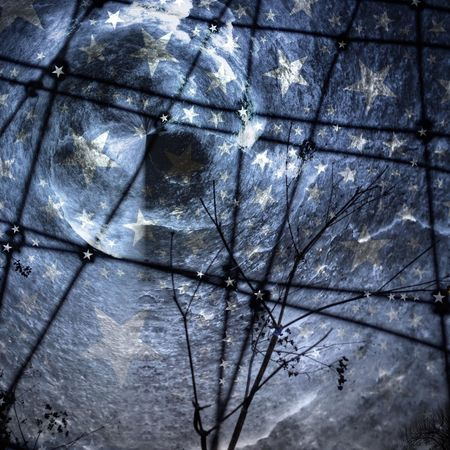 Dance by the Light of the Moon. Goodnight Moon Mob Fiction Further Down The Rabbit Hole. Disappearing Into Nothing