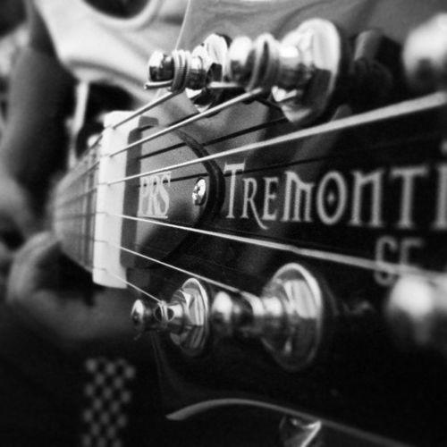 Tremontise