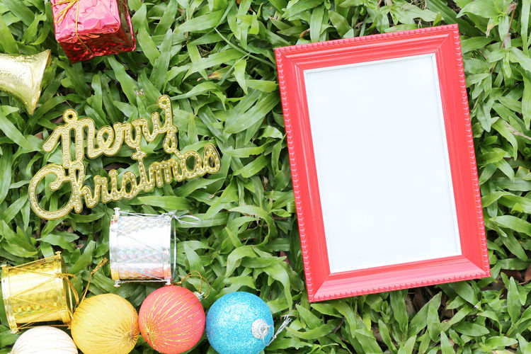 Christmas decoration on a green lawn and have gold text of Merry Christmas,Red empty wooden frame on the floor. Celebration Green Color No People Holiday Communication Frame Plant Still Life Nature High Angle View Plant Part Leaf Egg Close-up Event Holiday - Event Celebration Event Food And Drink Blank Merry Christmas Merry Christmas! Merry Christmas ♡ Green Lawns Wooden Frame Wooden Framework