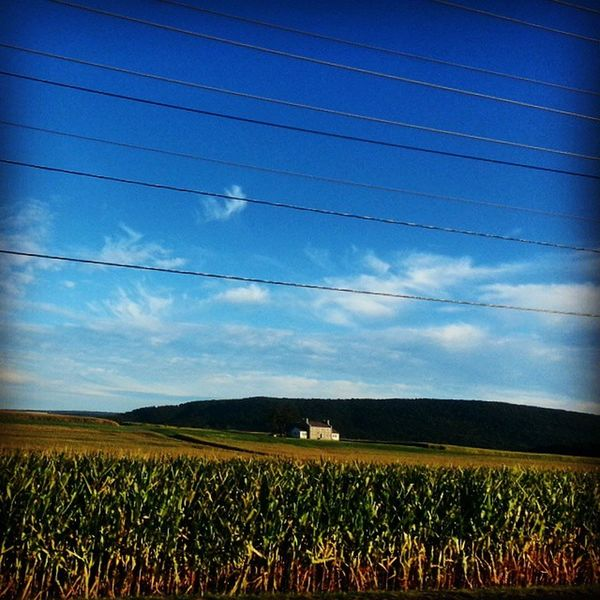 Cornfield house and mountain Farmcountry Landscape Amishcountry Ruralamerica rurex trb_members1 sky corn lateafternoon pennsylvania