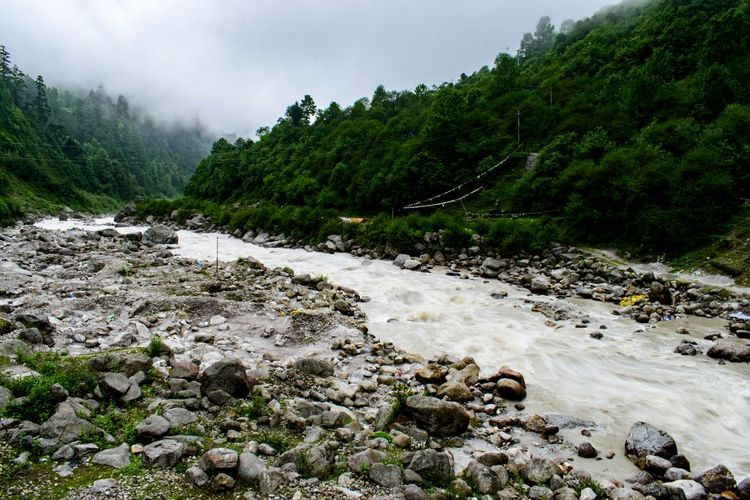 Teesta River Valley Greenery Forrest Himalayas North Sikkim Himalayan Range Summertime Majestic Nature Annapurna Cloudscape Adventure Beautiful Expedition Tree Water Mountain Forest Sky Cloud - Sky Landscape Atmospheric Mood Dramatic Sky Dramatic Landscape