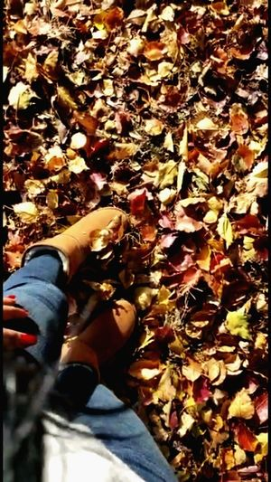 Low section of person with autumn leaves