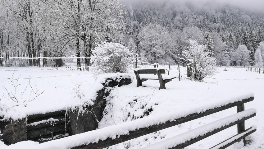 Winter Snow Nature Frozen Outdoors Landscape Cold Temperature 3XSPUnity Allgäu Alps Idyllic Scenery Romantic Place