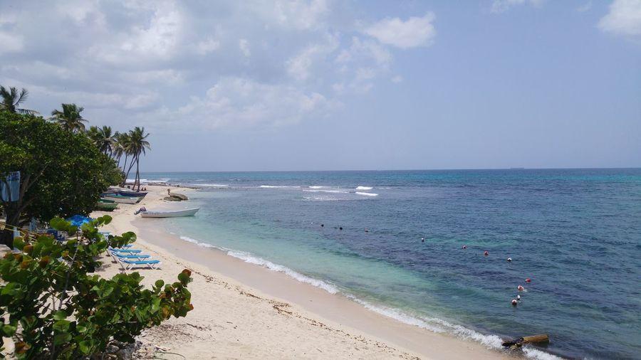 Caribbean Sea Island Dominican Republic La Romana Beach Shoreline Tourism Photography Scenery Paradise Places You Must To See East Island Life