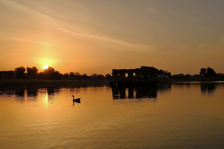 Gadi Sagar Lake in Jaisalmer, India. Animal Animal Themes Animal Wildlife Animals In The Wild Beauty In Nature Bird Lake Nature No People Orange Color Outdoors Reflection Scenics - Nature Silhouette Sky Sunset Tranquil Scene Tranquility Vertebrate Water Waterfront