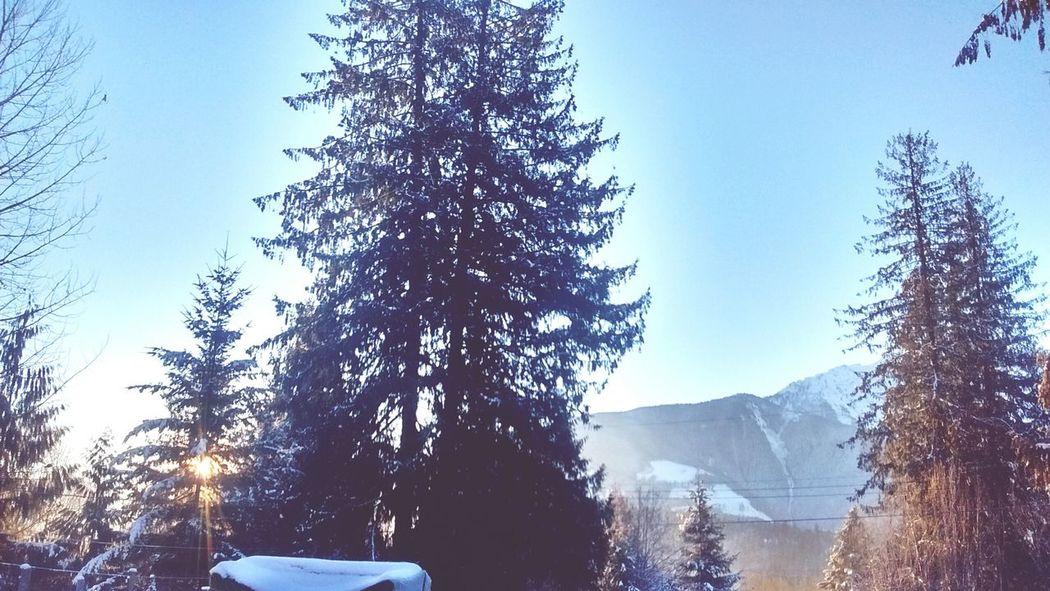 Showcase: January Winter RezLife Morning