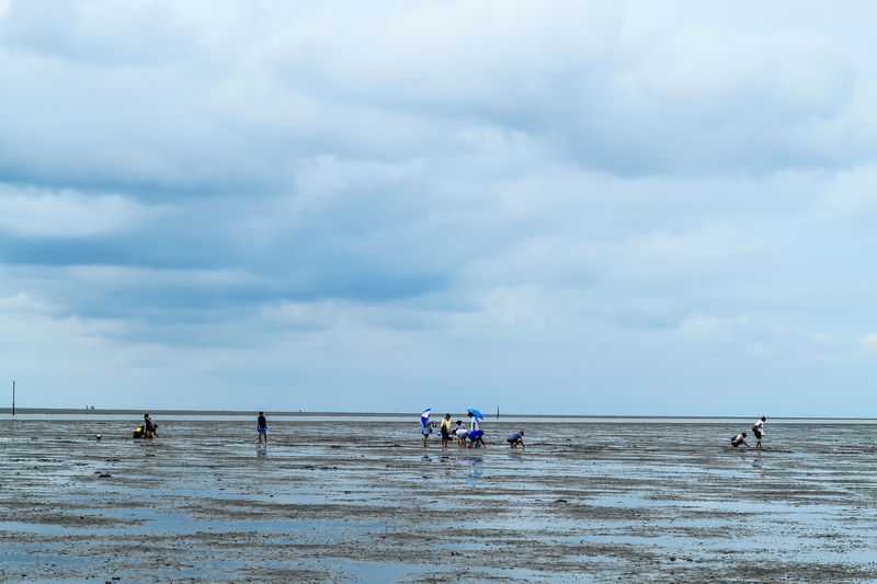 Tourists looking for Snail shells on the sea floor mud. Beach Beauty In Nature Cloud - Sky Day Group Of People Horizon Horizon Over Water Land Men Nature Nautical Vessel Outdoors Real People Scenics - Nature Sea Sky Tranquil Scene Tranquility Transportation Water