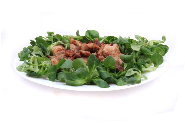 Close-up of salad in plate against white background