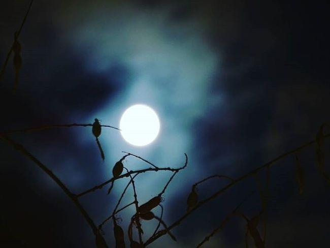 9 Moon