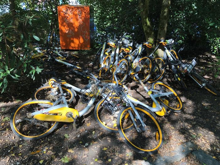 obikes Share Economy Future Mobility Sustainability Circular Economy Bicycle Transportation Day Nature High Angle View Land Vehicle No People Mode Of Transportation Abandoned