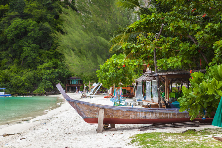 Phuket Thailand Architecture Beach Beauty In Nature Day Forest Land Long Tail Boat Mode Of Transportation Moored Nature Nautical Vessel No People Outdoors Paradise Plant Sea Tranquility Transportation Travel Destinations Tree Water