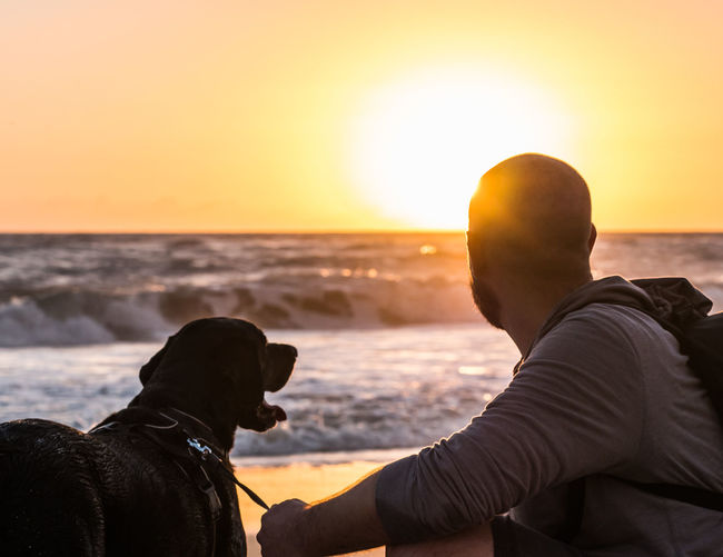 A man and his dog watching the sunrise at the beach. Animal Themes Beach Canine Dog Domestic Domestic Animals Horizon Horizon Over Water Land Leisure Activity Mammal Nature One Animal Pets Real People Sea Sky Sunset Water