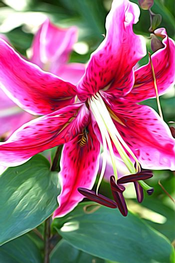 Flower Flower Collection Red Flower Icolorama Lily Red Lily Wasp Flowers, Nature And Beauty Beauty In Nature Natures Diversities Nature On Your Doorstep Flowers,Plants & Garden