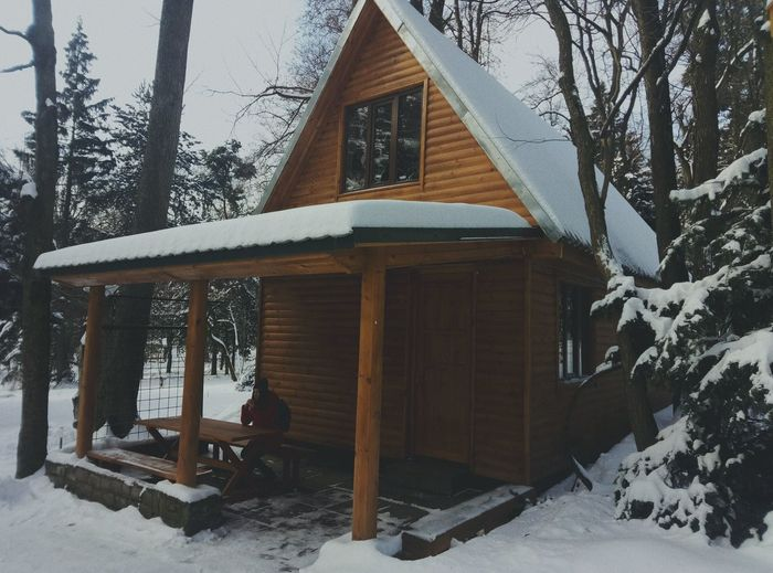 Snow Winter Cold Temperature Tree Weather Built Structure House Building Exterior Christmas Architecture No People Outdoors Nature Day Snowing Christmas Tree Powder Snow
