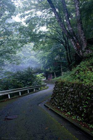 Landscape Landscape_Collection Landscape_photography Landscapes Sloping Road Fog Foggy Canon EOS 70D Canon 70d Okutama
