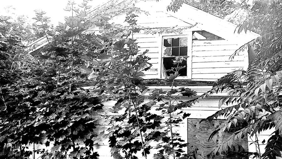 Abandoned House Houses And Windows Abandoned & Derelict Abandoned_junkies Urbanexploration Inthehood EyeEm_abandonment Glad Im In Recovery! Feeling Grateful!!