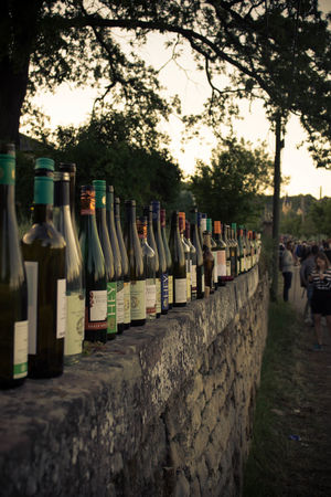 #Saale #Weinmeile Alcohol Bottle Drink Focus On Foreground Large Group Of Objects Sunlight Tree Wine